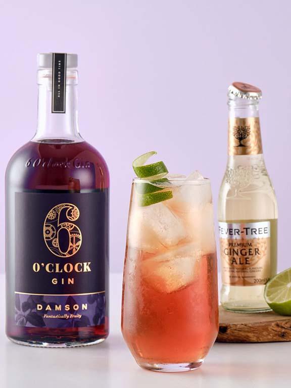 6 O'Clock Damson Gin Ginger Ale