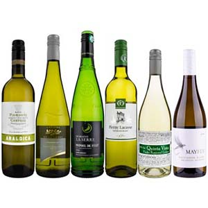 The Zesty White Wine Case