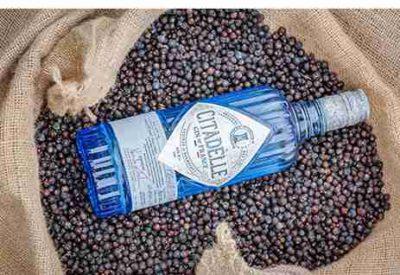 Citadella bottle in bag of juniper