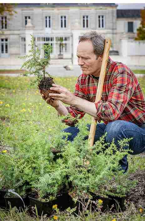 Citadella man looking at plant (1)