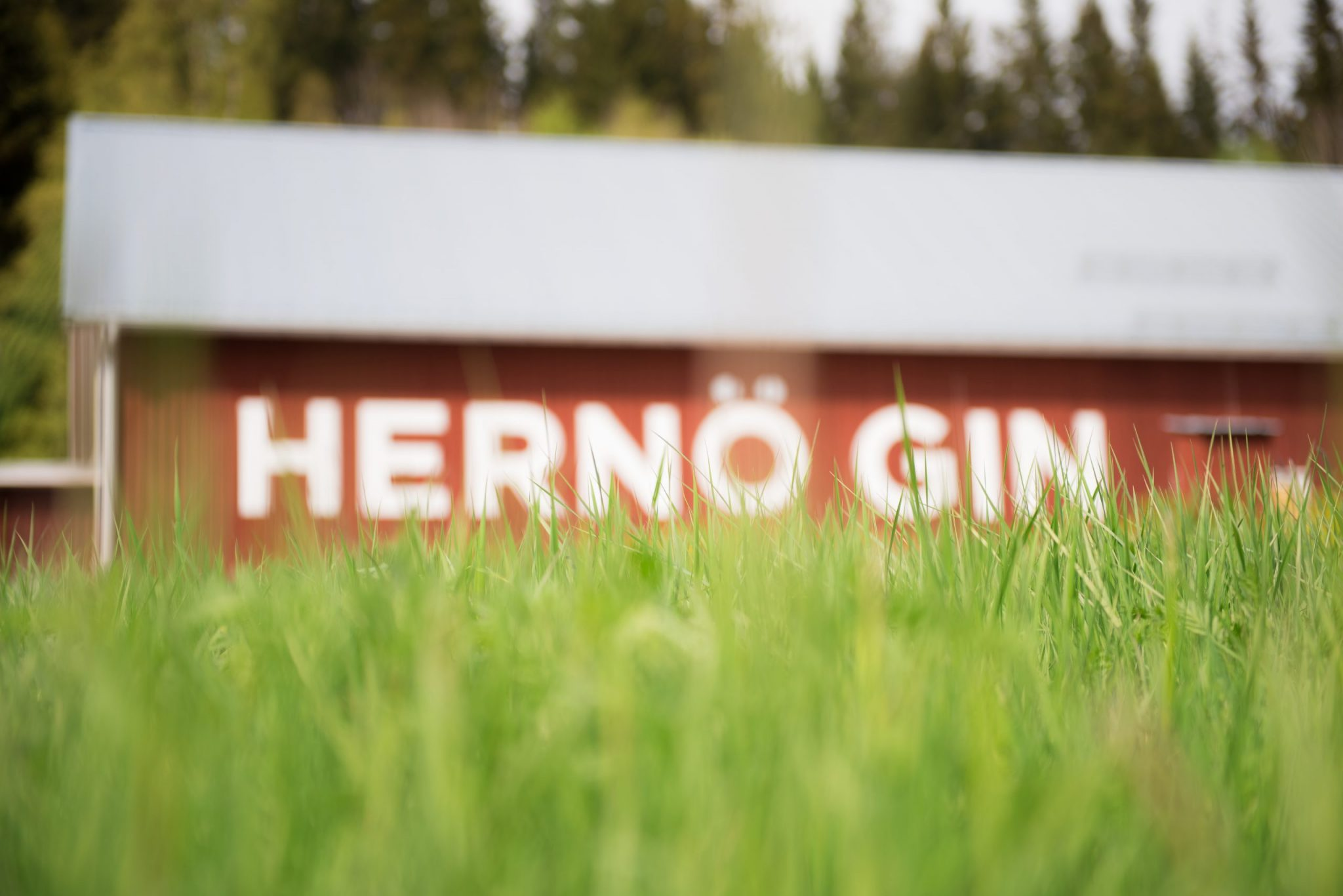 Hernö Gin Distillery, Dala, The High Coast of Sweden.