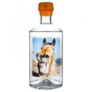 Gin Jar Horseradish Horse face Gin white background
