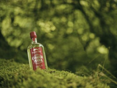 Wicked Wolf Exmoor Vodka on mossy mound